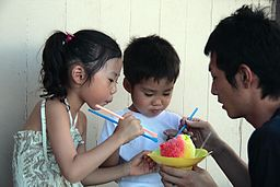 Rodeo fans. Tourists in Hawaii. Shave ice has fans everywhere. (Photo credit: Brock Roseberry  Wikimedia Commons)