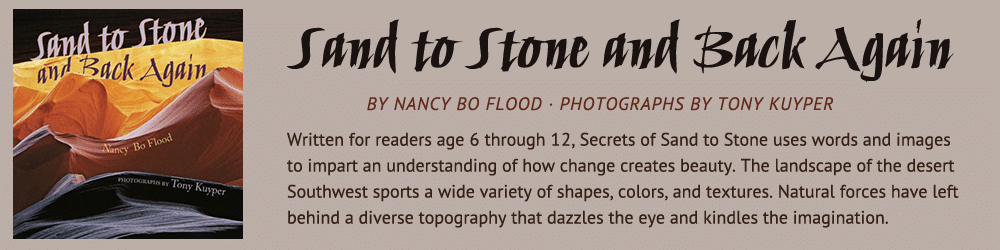 From Sand to Stone and Back Again by Nancy Bo Flood