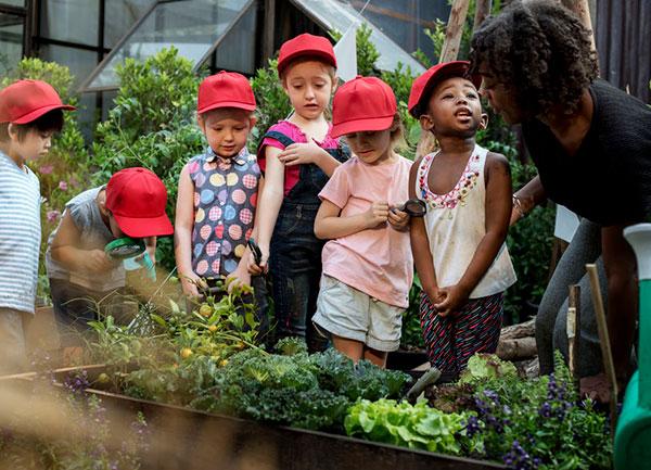 Kids School Garden